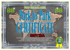 First P2P-88 Award