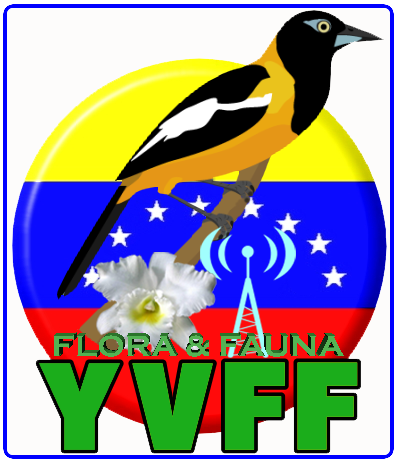 YVFF_logo1